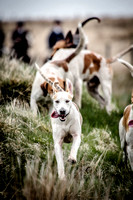 25.04.15 Exmoor Foxhounds at Hillcrest