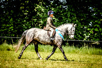 Broadwell Charity Pony & Dog Show 7-May-17